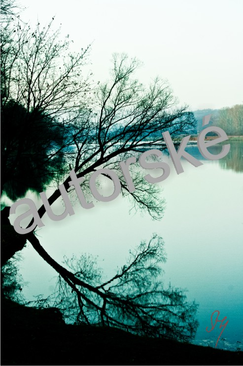 autorská fotka 23