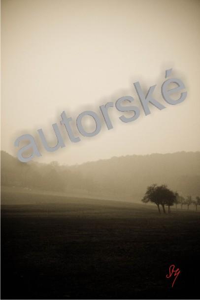 autorská fotka 74